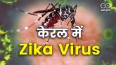 Where did the Zika virus come from? first case in
