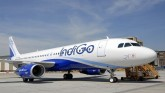 Pandemic Fallout: Indigo To Lay Off Over 2,300 Emp