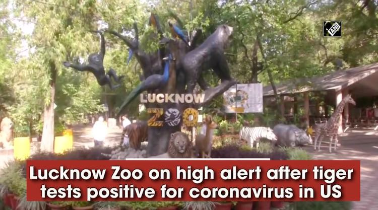 Coronavirus: Lucknow zoo on high alert