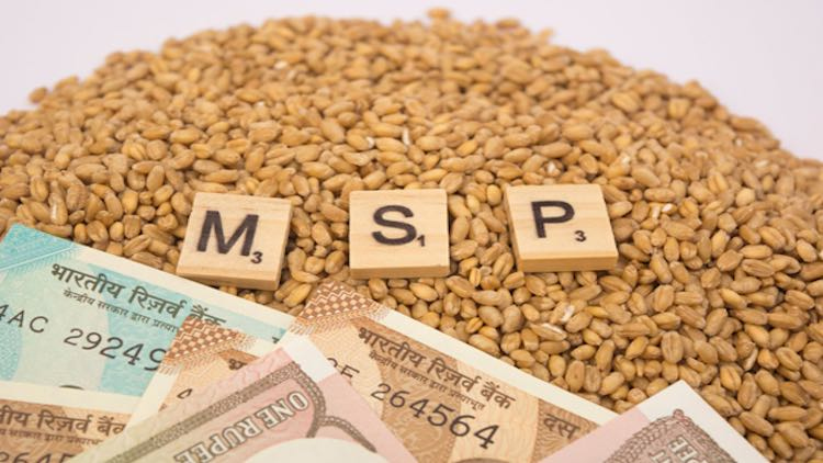 What is MSP and why is it important for farmers?