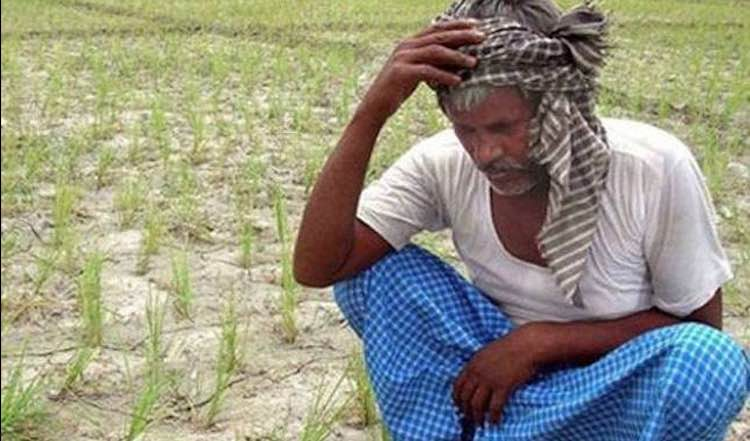 the farmers of Maharashtra are hit by monsoon, cro