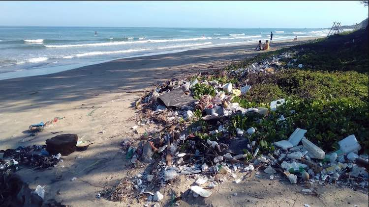 Plastic Marine Debris: Consumers Concerned But Not
