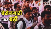 19 lakh jobs lost in August, unemployment rate in