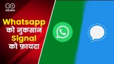 Signal Is Fastest Growing App As Whatsapp Privacy