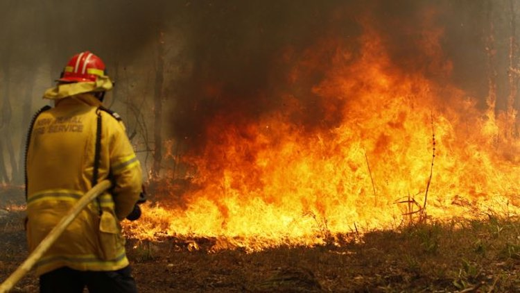 Severe fire in Australia's forests, many areas aff