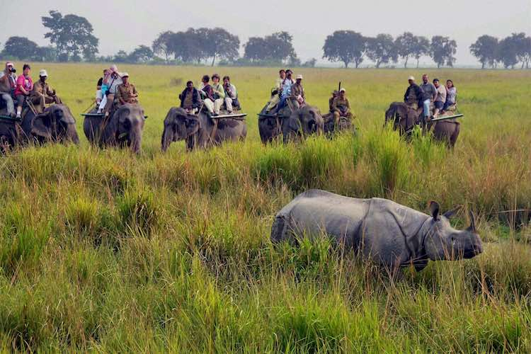 CAA: Assam's Tourism Industry Losses Rs 400 Crore,