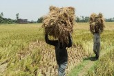 Why farmers and common people do not get the benef