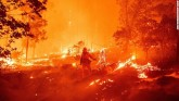 Fire in California and Oregon forests reaches 12 s