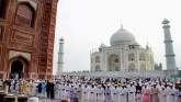 Progressive Muslims Issue Guidelines On Eid-Ul-Zuh