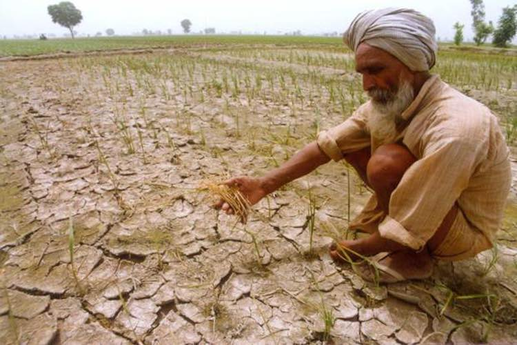 in 2018, more than 10 thousand farmers committed s