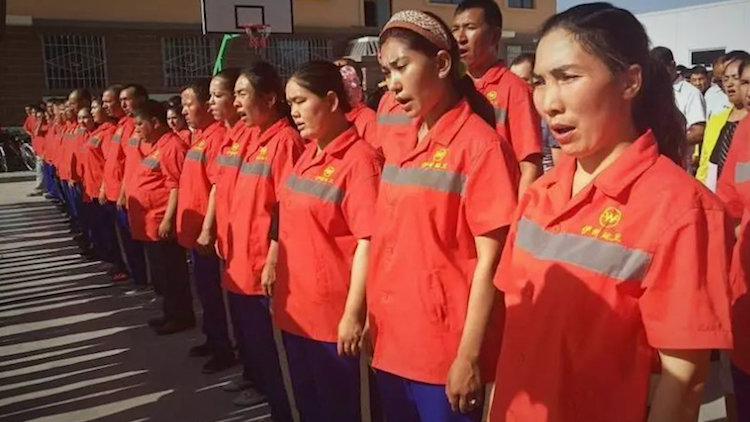 China Uighurs Forced Into Factory Labour For Globa