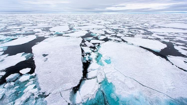 Climate Change: This Year's Global Risks Landscape
