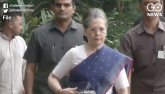 Outrage over petrol and diesel prices, Sonia Gandh