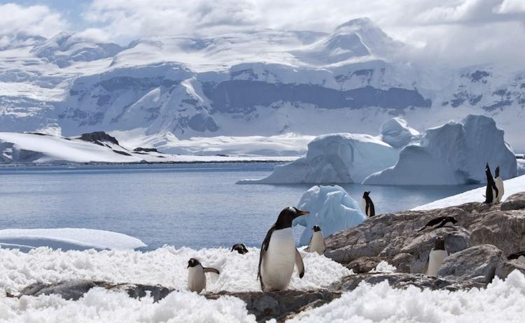 Antarctica, the world's coldest continent warming